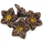 Dark chocolate flowers – Bulk case of 76